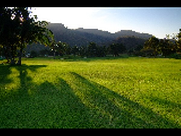 Palm-Hills-Golf-Club-005