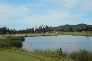 Sea-Pine-Golf-Course-002